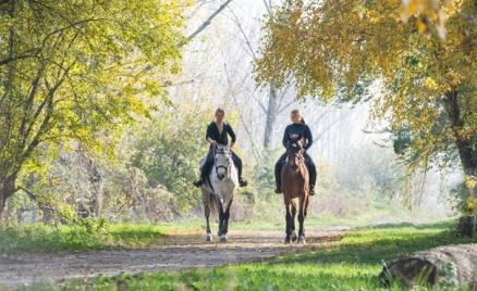 Конные прогулки в КСК «Гвардия»