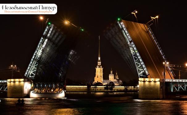 На водные и музейные экскурсии по петербургу можно будет купить единый билет