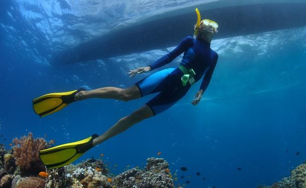 Обучение дайвингу одного, двоих или четверых в аквапарке «Мореон» от дайвинг-клуба «Морские ангелы». Скидка до 75%