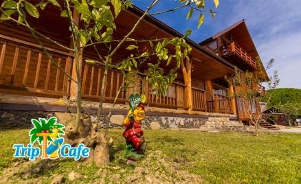 Гостевой дом «Ковчег» в Абхазии