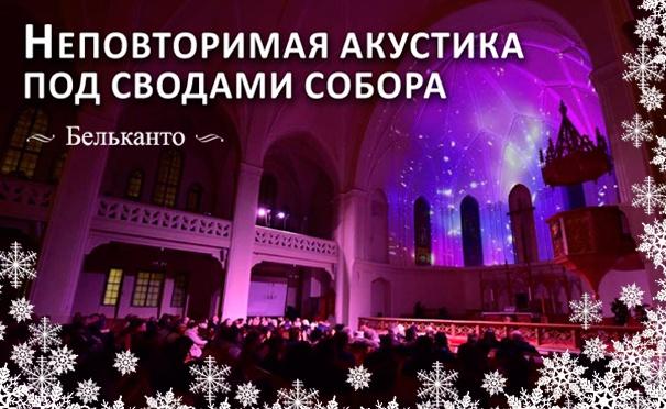 Билеты на рождественские концерты классической музыки с песочной анимацией в Кафедральном соборе Святых апостолов Петра и Павла от фонда «Бельканто» в январе. Скидка 50%