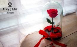 Вечная роза в колбе с гравировкой